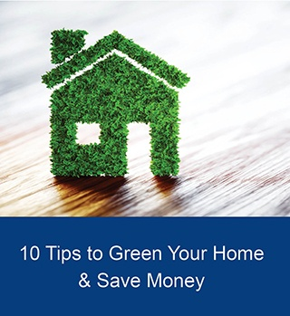 10 tips to green your home article image